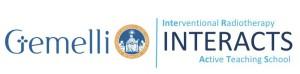 Logo Gemelli interacts